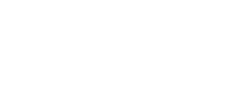 Alpha 1 Tax and Wealth